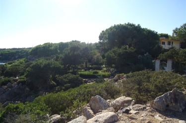 vista dal lato mare del B&B Giglio di Mare a Cala Liberotto