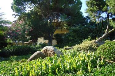 Vista esterna del B&B Giglio di Mare a Cala Liberotto